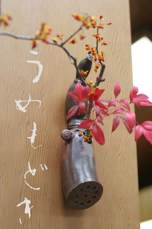 今日の花*ウメモドキ