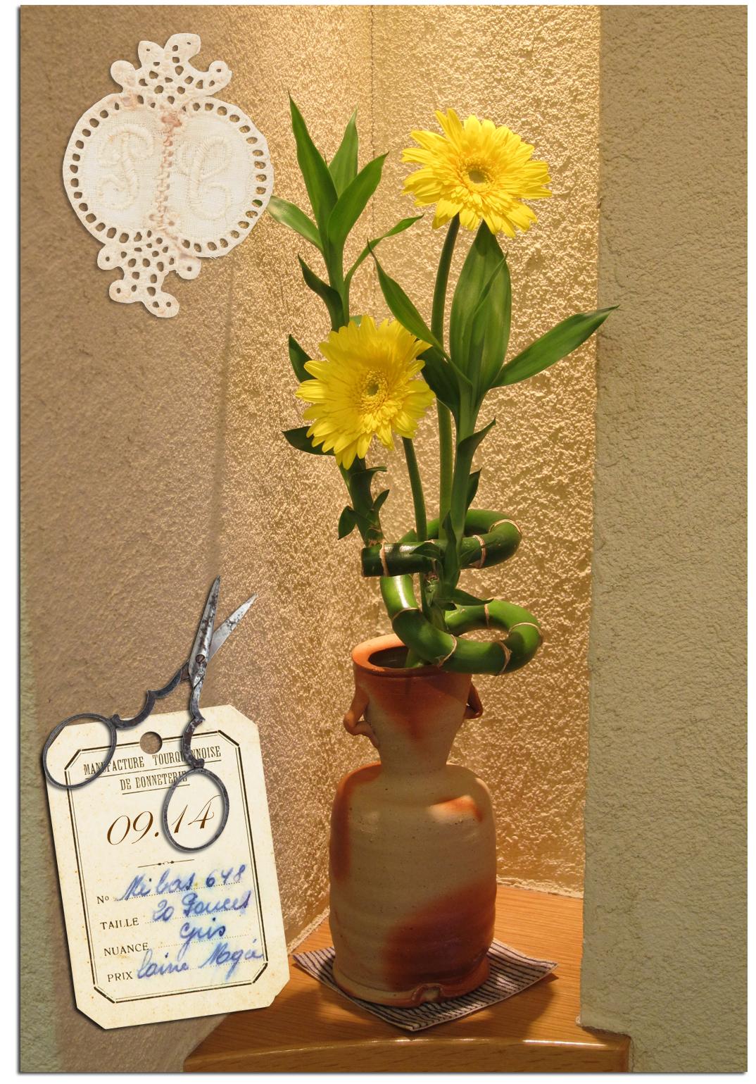 今日の花*ガーベラ*