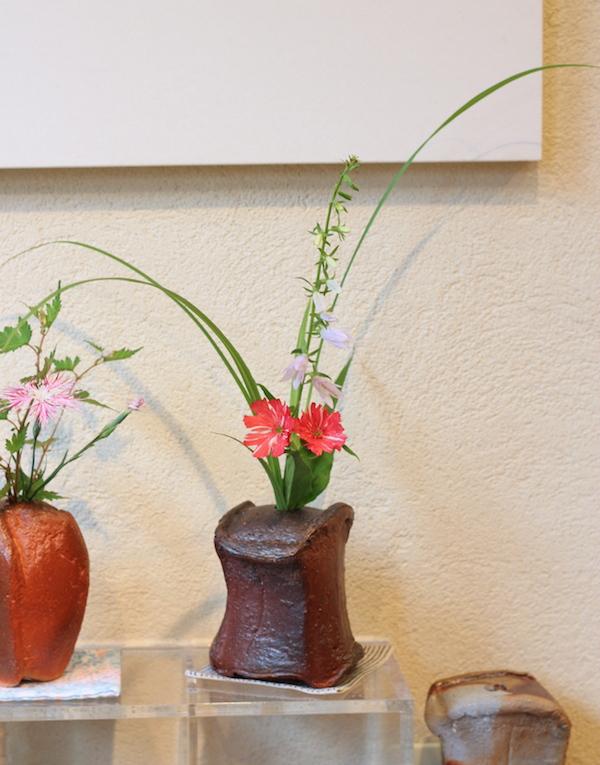 絞り咲き松本仙翁