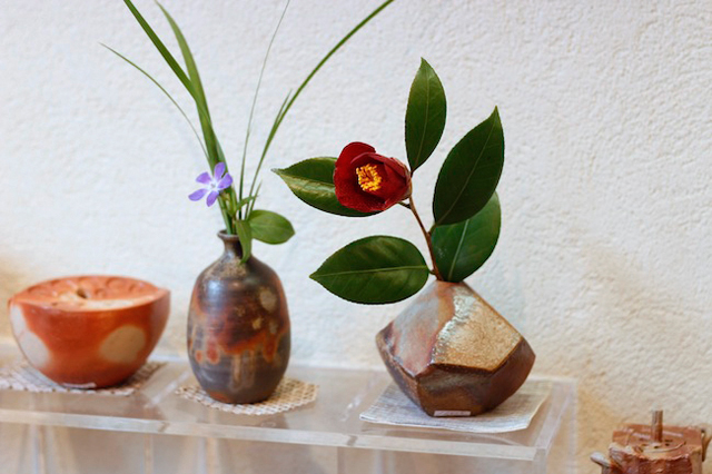 今日の花「椿」